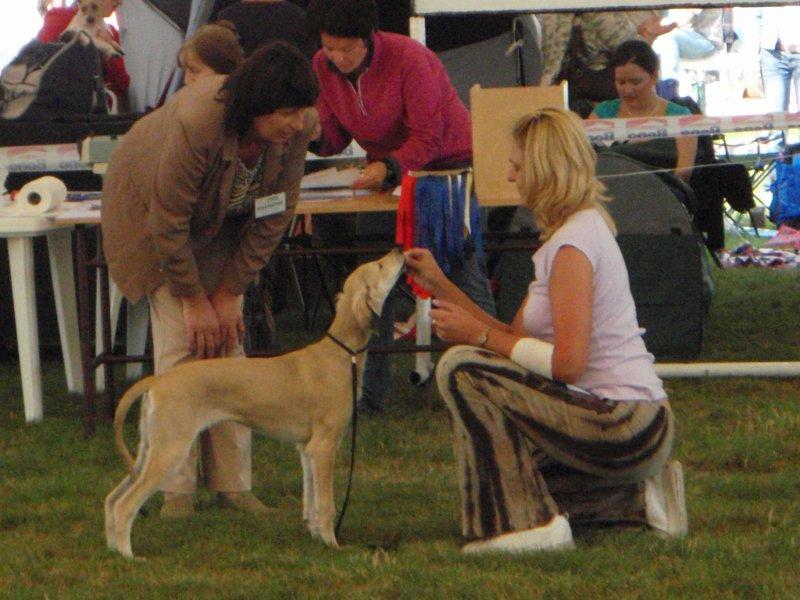 first dog show